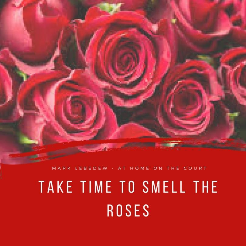 3 - roses.jpg